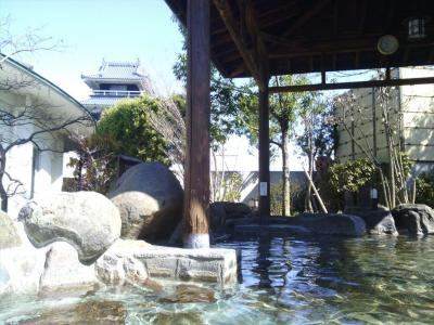 「七城温泉ドーム」と「七城メロンドーム」~田園にたたずむ天守閣と巨大メロン(^^;