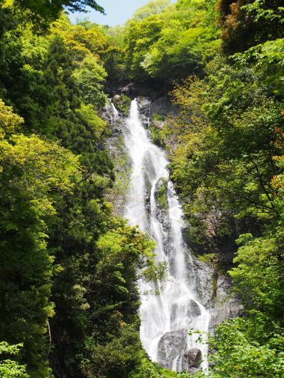 またまた悪友S(♀)がやってきた(3) 滝メグラーが行く219 旅の締めはやっぱり滝と温泉 岡山県真庭市のお手軽滝めぐり