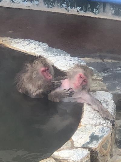 函館、 湯の川温泉イマジンホテル&リゾートに宿泊冬の1人旅、ワカサギ釣りスノーシューも満喫。 4日目