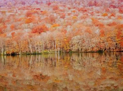 Go to 青森で山と温泉(1) -八甲田登山と紅葉の蔦沼