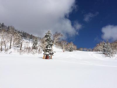 2019年 春スキー キロロ まだまだシーズンですっ! 4泊5日