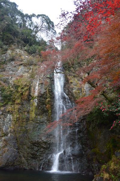 大阪・紅葉の箕面大滝まで、滝道を歩く。