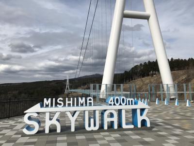 初春の箱根・三島空中散歩
