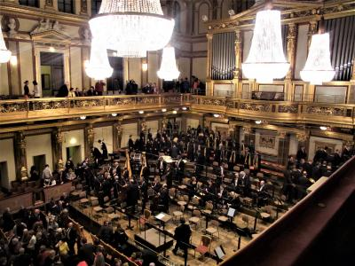 ウィーンのムジークフェラインで豊潤な音響に浸る(2014年3月)