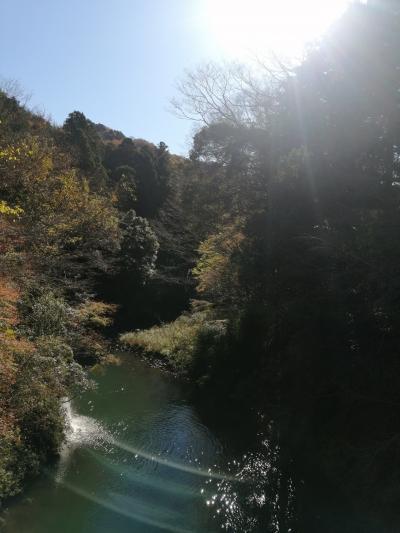 Go to travel  秋の散歩と山中温泉