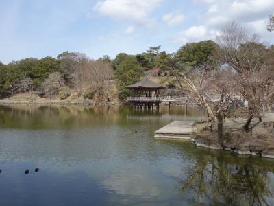 志賀直哉旧居から奈良公園を散策。ひさしぶりで鷺池・浮見堂周辺を歩きました。