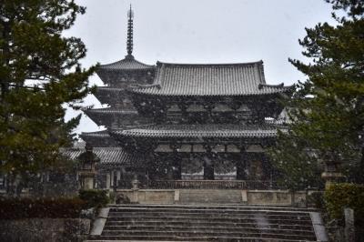大和の国の古寺巡礼1 めったに見れない雪の法隆寺です!