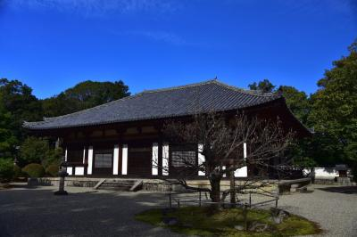 大和の国の古寺巡礼3 紺碧の空の下、秋篠寺を訪ねました。