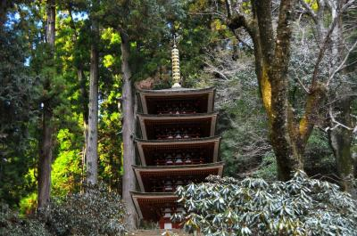 冬の室生寺は、本当に心がほどけていきそうでした。