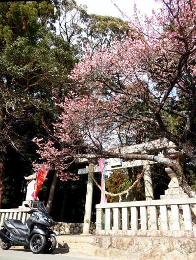 一足早い春のスポットへ - 浜名湖一周ツーリング 2021