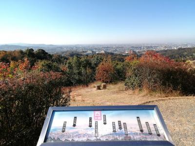 快晴の秋空の下、岡崎中央総合公園「健康の森」をウォーキング~