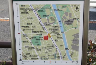 2021春、高蔵遺跡(4/4):2月17日(4):高座結御子神社、椿、水仙、夜寒公園、門柱、名古屋市博物館
