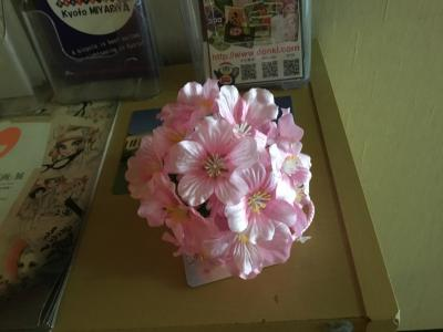 20210308-20210314 京都 早咲きの桜の季節やね