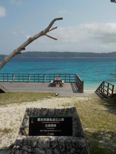 どこかにマイルで沖縄へ メインは座間味島