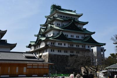 名古屋城大天守は解体して建て直しだそうです