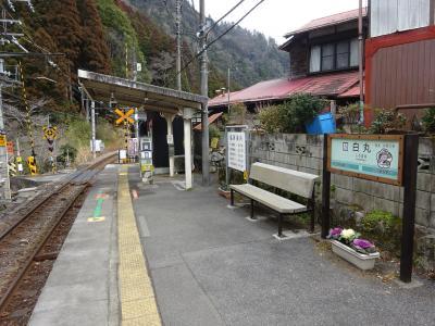 ほとんど地元・青梅線の駅を巡ってきた【その3】 白丸駅と川井駅と、森の中のお肉レストラン