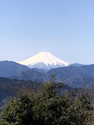 お天気もいいので、初!高尾山ハイキング(^_^)