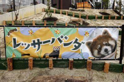 東山動植物園 動物園7不思議の1つがついに解消!! 東海地方の動物園の雄で39年ぶりにレッサーパンダ飼育の再開です!!
