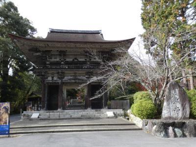 滋賀 大津 三井寺 仁王門(Niomon Gate, Miidera Temple, Otsu, Shiga, JP)