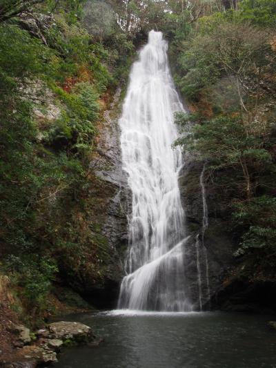 滝メグラーが行く223 滝メグラー復活! しかし楽勝のはずの琴滝でやらかしました 京都府京丹波町