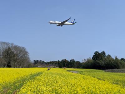 ありがとう!物流を支える成田空港を彩る飛行機たち(2020-2021)