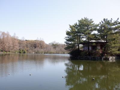 M MAR 2021  石神井公園・・・・・④三宝寺池