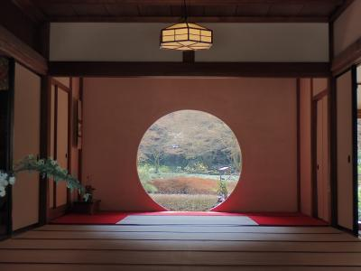 鎌倉散歩 円覚寺から明月院へ行きました。