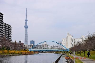 【東京散策114】2021春! 旧中川の終点から始点まで『健康の道』を歩いてみました