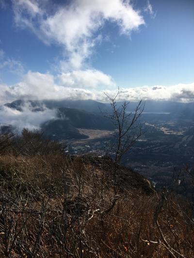 仙石原すすきと金時山
