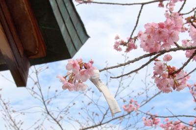 結婚34周年記念旅行香川県の旅
