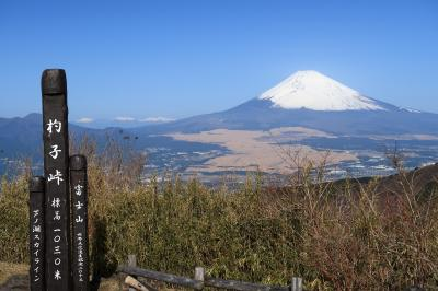 杓子峠(静岡県裾野市)へ・・・