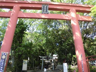 世田谷八幡宮の風景