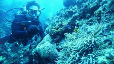 たった1日でダイバーになれた沖縄の旅