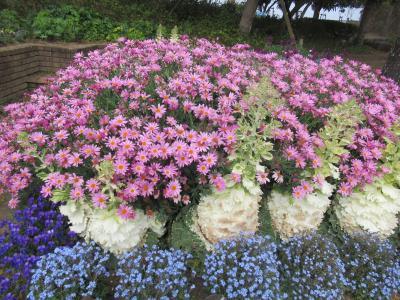 浜名湖のほとりで、花に癒される!教科書にのっていた登呂遺跡は、こんな所だった・・・