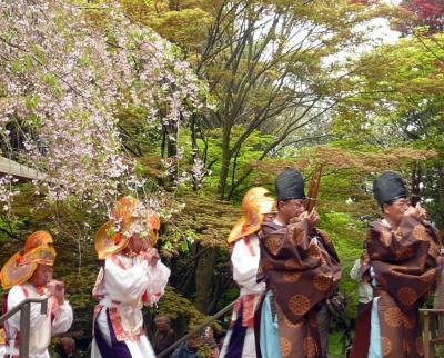 桜・桜・桜に誘われて!