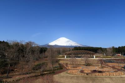 富士山樹空の森(静岡県御殿場市)へ・・・
