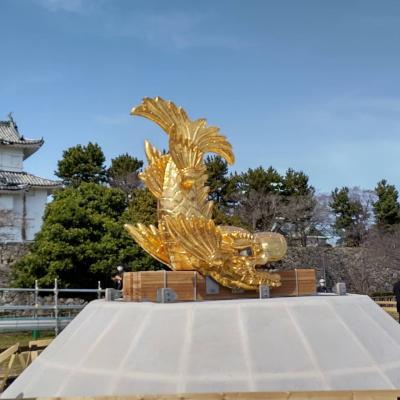 名古屋城金鯱展示内覧会2021