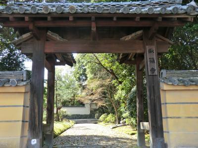秋篠寺散策、西大寺桜