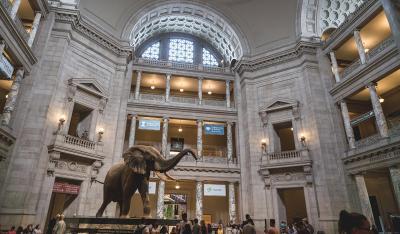 スミソニアン2大博物館 国立航空宇宙博物館と国立自然史博物館へ行って来た
