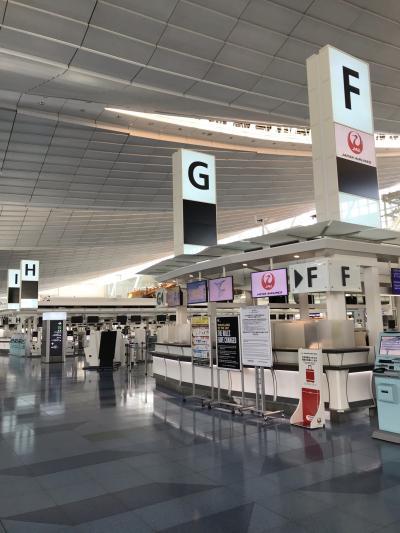 2021年2月 緊急事態宣言下の羽田空港国際線ターミナル