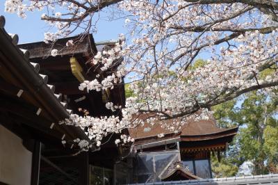 20210326-6 京都 ちょっとだけ御香宮神社にお参りを