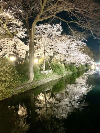 ☆今宵の桜はひと味違う☆
