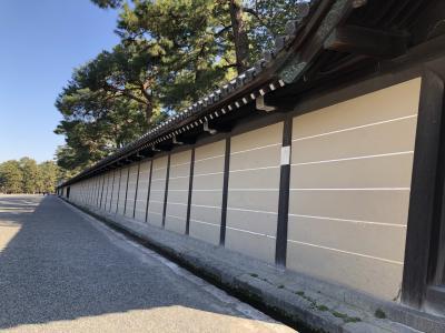 京都御苑に行きました