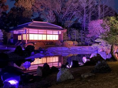 桜満開予想日の京都詰め込み30時間-2 NAKED FLOWERS-桜-世界遺産・二条城 AWOMB