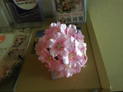 20210322-20210328 京都 すっかり桜の季節やね