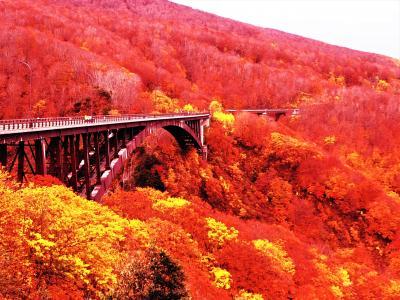 みちのく青森巡り 萌えるような紅葉を見てみたい①【城ケ倉大橋・黒石散策編♪】