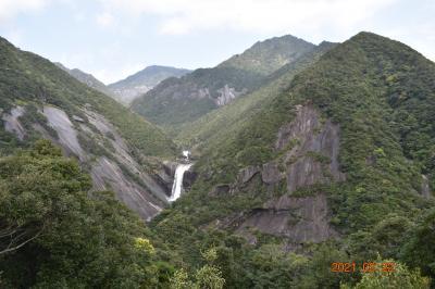 ★すこし晴れました!2泊3日屋久島の旅Vol-3千尋(センピロ)の滝、白谷雲水峡、に行きました。