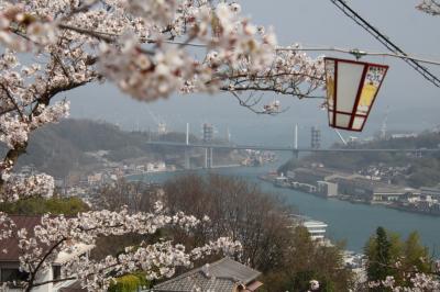 2021 広島で思い出作り! その③ 桜満開の尾道散策!