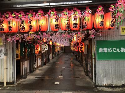 2021年03月 静岡タウン旅行 青葉おでん街と駿府城公園の夜桜