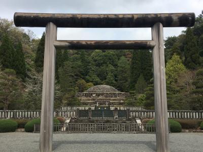桜を眺めながら武蔵野御陵に参拝しました